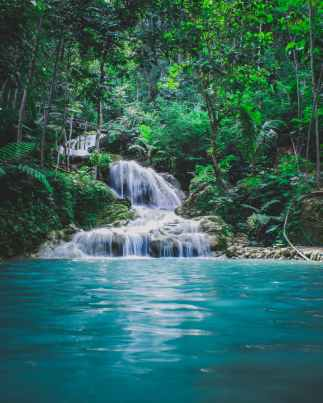 photography of waterfalls between trees